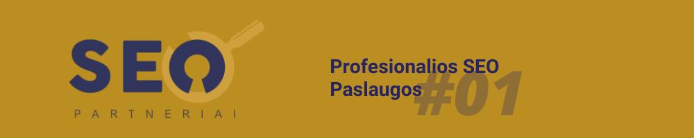 profesionalios seo paslaugos